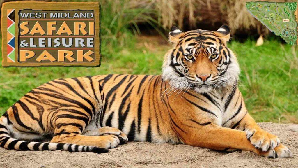 Safari Park West Midlands